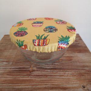 charlotte cactus jaune